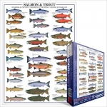 EUROGRAPHICS 6000-0311 SALMON AND TROUT
