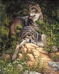 DIMENSIONS 91416 WILD AND FREE WOLVES PBN
