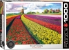 EUROGRAPHICS 6000-5326 TULIP FIELDS NETHERLANDS