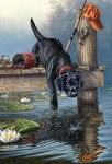 COLART 86238 LABRADOR DOG ON DOCK/LAKE ACRYLIC PAINT BY NUMBER (9 PULGX12 PULG)
