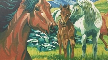 COLART 86287 WILD HORSES ACRYLIC PAINT BY NUMBER (11.5 PULGX15.5 PULG)