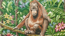 COLART 86301 ORANGUTAN IN JUNGLE (FLOWERS & BUTTERFLY) ACRYLIC PAINT BY NUMBER (11.5 PULGX15.5 PULG)