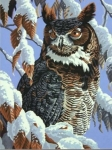 DIMENSIONS 91476 WINTER WATCH (OWL IN TREE SNOW SCENE) PAINT BY NUMBER (11 PULGX14 PULG)