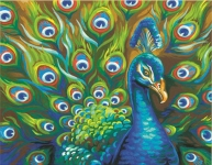 DIMENSIONS 91477 WILD FEATHERS (PEACOCK) PAINT BY NUMBER (14 PULGX11 PULG)