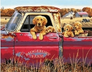 DIMENSIONS 91525 GOLDEN RIDE (DOGS IN PICKUP TRUCK) PAINT BY NUMBER (20 PULGX16 PULG)
