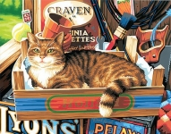 DIMENSIONS 91655 CAT SIGNS PAINT BY NUMBER (CAT LAYING IN TOOLBOX) (11PULGX14PULG)