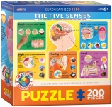 EUROGRAPHICS 6200-0305 THE FIVE SENSES 200 PIEZAS PUZZLE